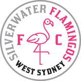 The flamingos fc pcw logo final rgb